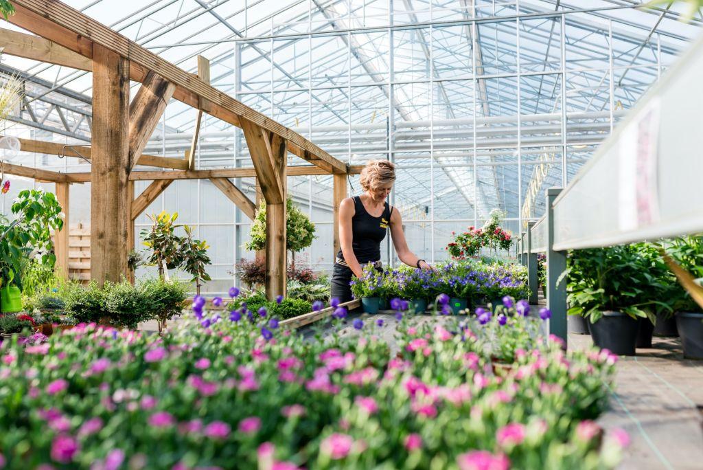 tuincentrum twente heerdink