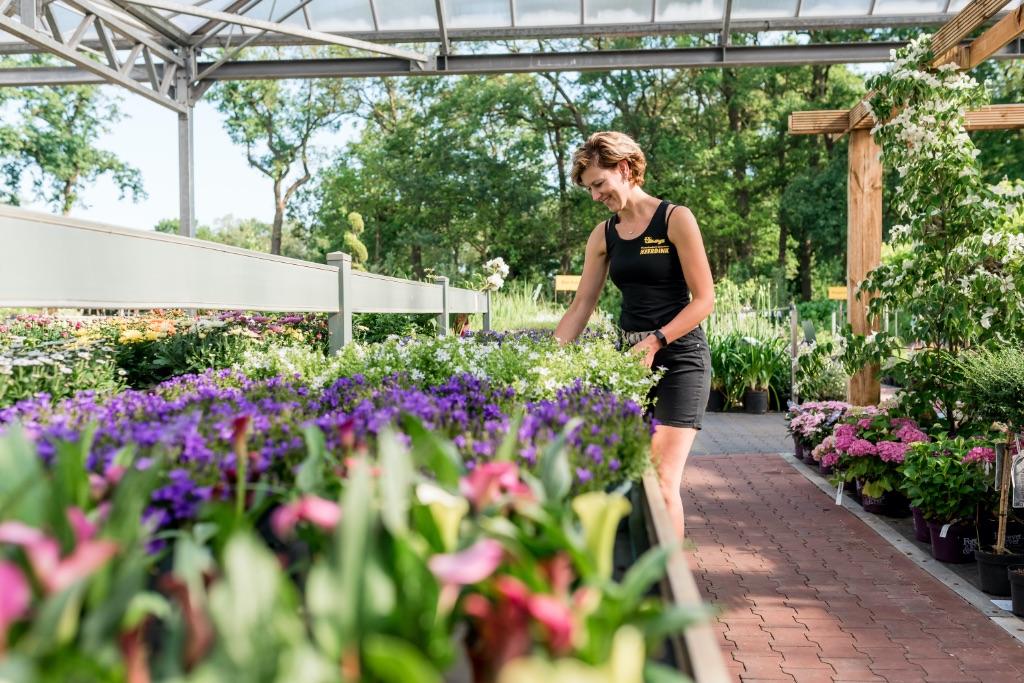 tuinplanten tuincentrum heerdink